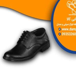 کفش مردانه کد 712-مدل پویا
